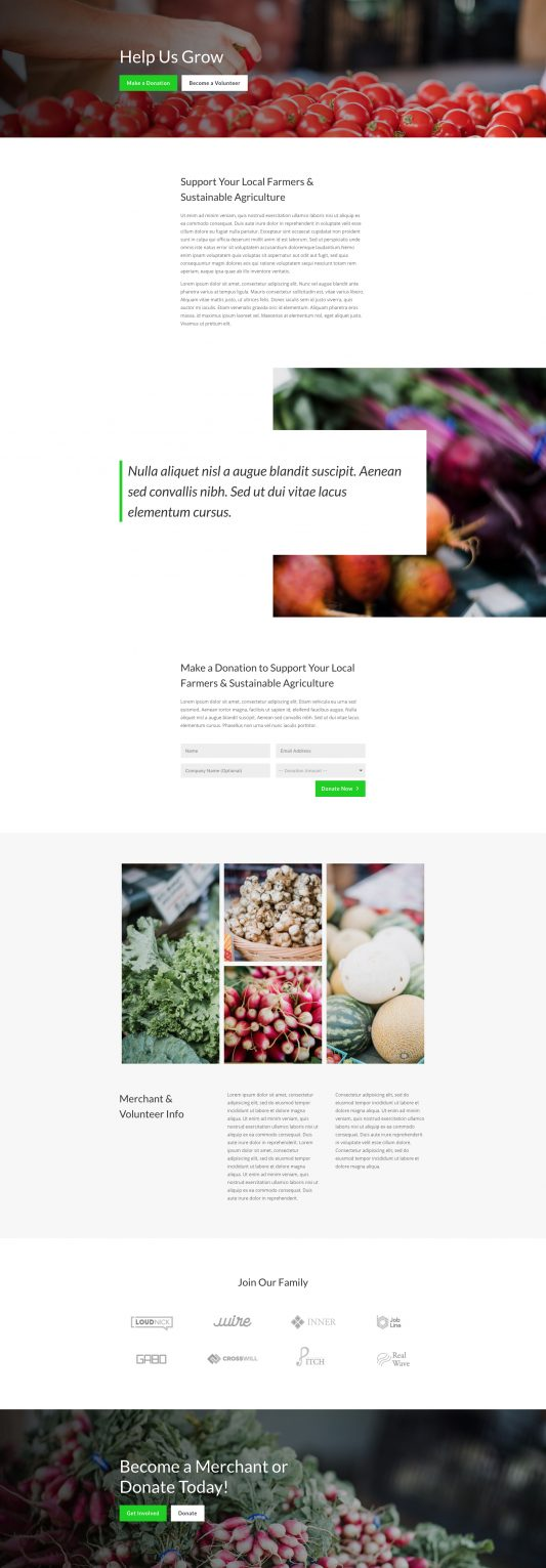 Farmers Market Web Design 4