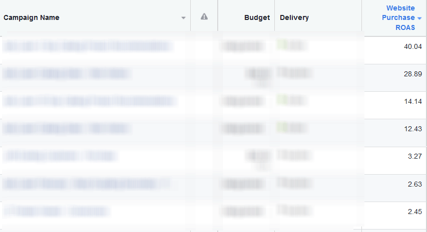 Facebook Ad Campaign Return On Ad Spend